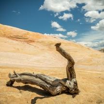 Yellow Rock - Auf der Suche nach den ersten Fotospots