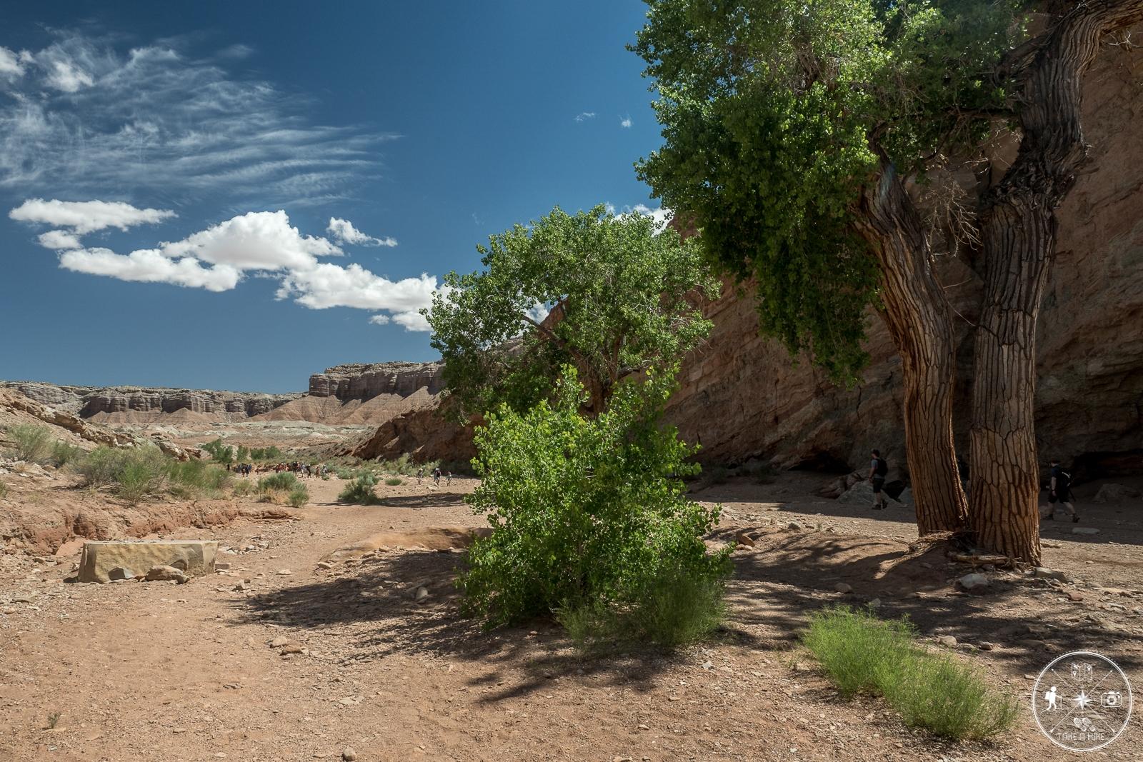 Little Wild Horse Canyon - auf dem Weg zum Auto