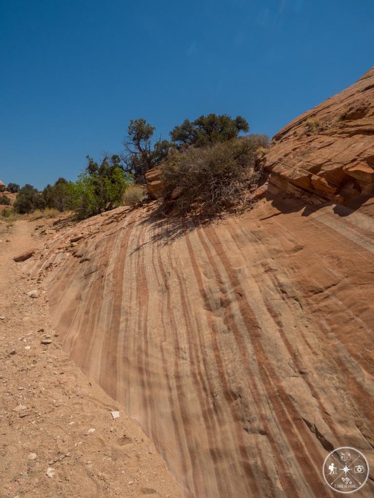 Tolle Linien im Fels